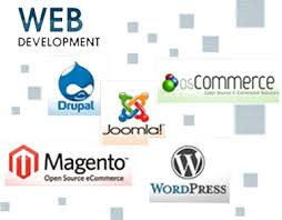 web development comapny in Jaipur